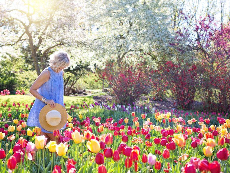 Het hele jaar door een mooie tuin
