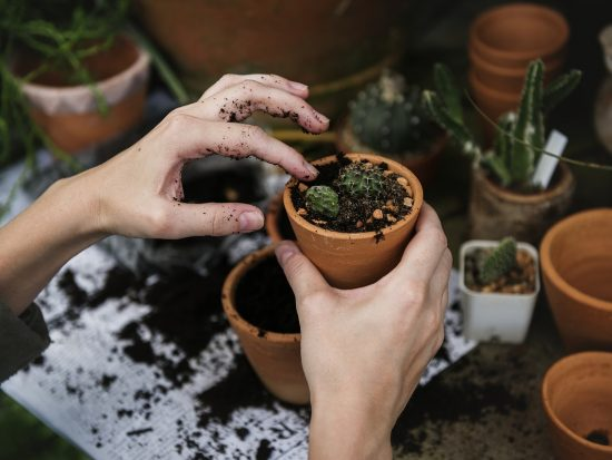 Zo maak jij je tuin helemaal zomerproof!