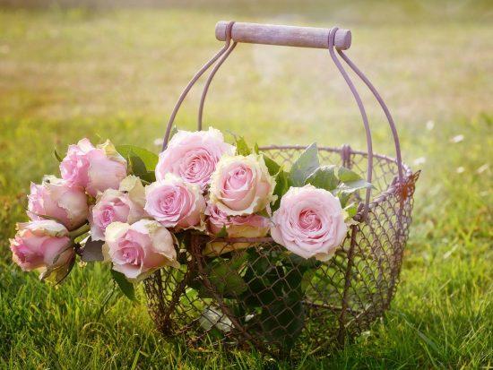 Hoe betover je jouw tuin met tuinhout en zomerse accessoires?