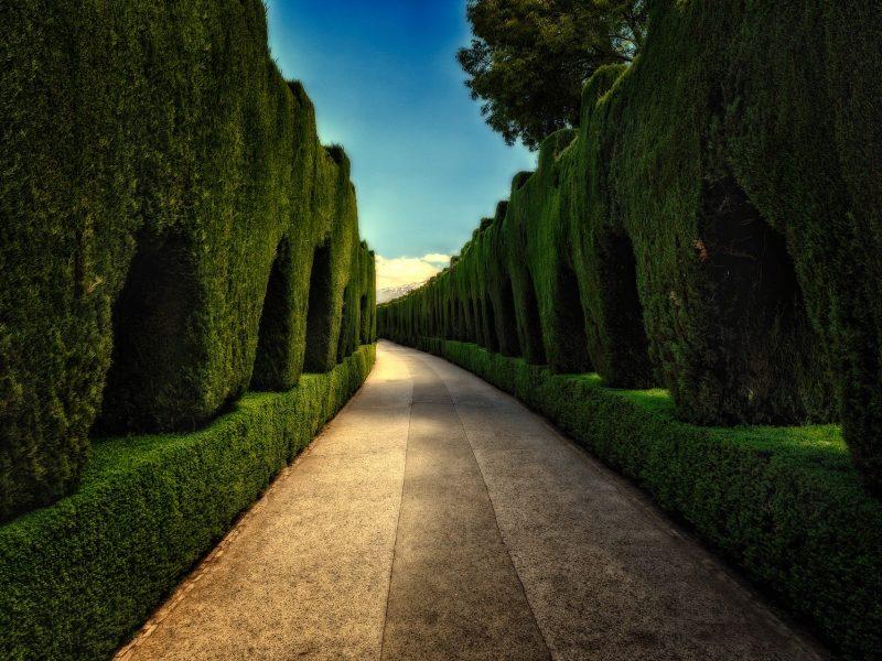 Tuininrichting met kunstplanten en kunsthaag